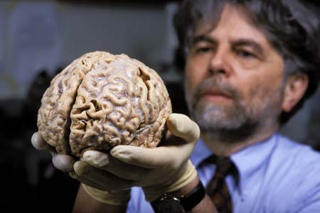 Como desarrollar el cerebro humano