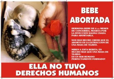 España y Libertad pide que se inspeccionen las clinicas que realizan abortos en las diferentes comunidades autónomas
