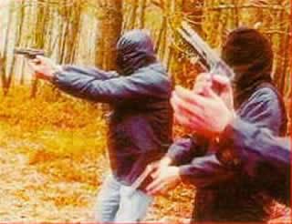 Situación actual de la banda terrorista ETA